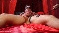 Alex Mecum - Bound Valentine: Alex Mecum Covered in Wax, Suspended, Pumped, Fucked | Picture (11)