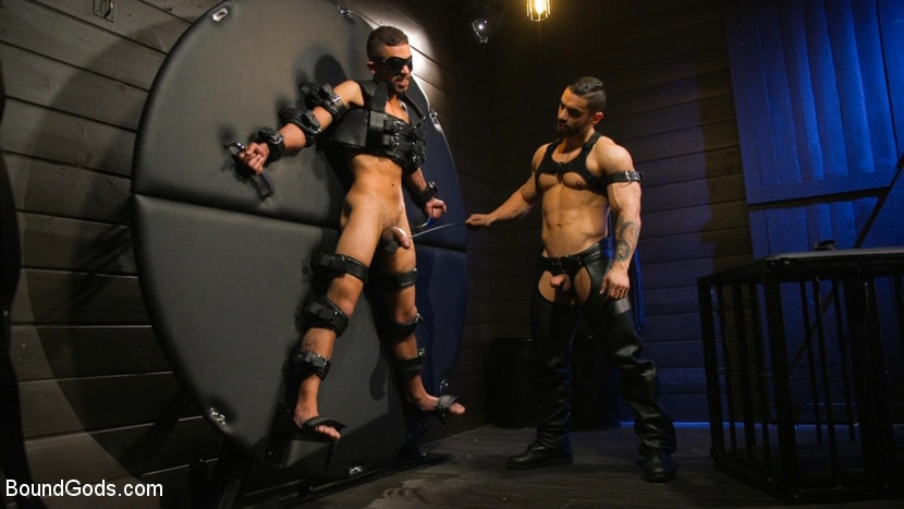 Arad Winwin - Arad's New Boy: Ricky Daniels Serves The House | Picture (1)