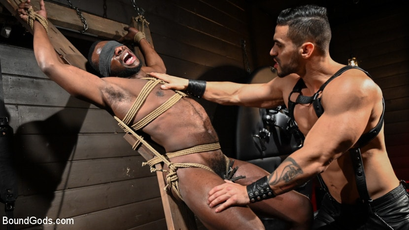 Arad Winwin - Fresh Muscle: Leather Clad Arad Winwin Punishes Newcomer Parker Payne | Picture (6)