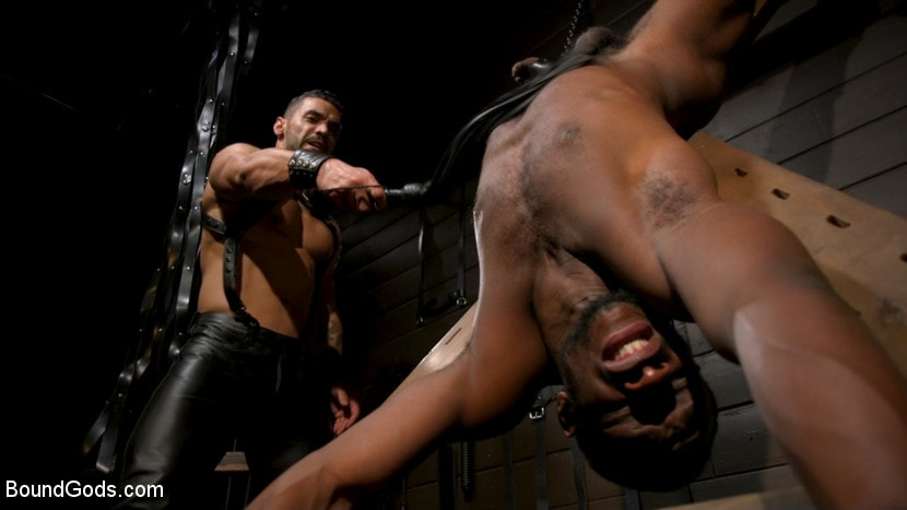 Arad Winwin - Fresh Muscle: Leather Clad Arad Winwin Punishes Newcomer Parker Payne | Picture (13)