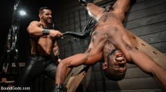 Arad Winwin - Fresh Muscle: Leather Clad Arad Winwin Punishes Newcomer Parker Payne | Picture (10)