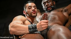 Arad Winwin - Fresh Muscle: Leather Clad Arad Winwin Punishes Newcomer Parker Payne | Picture (18)