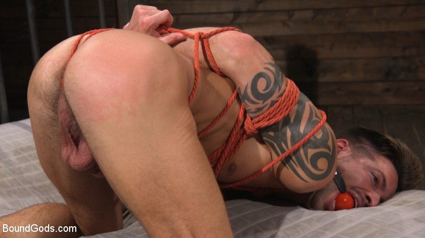 Casey Everett - Stepdaddy's Dungeon | Picture (19)