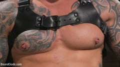 Casey Everett - Stepdaddy's Dungeon | Picture (3)