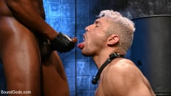 Jacen Zhu - Muscle Stud Showdown: Seth Santoro submits to Jacen Zhu | Picture (14)