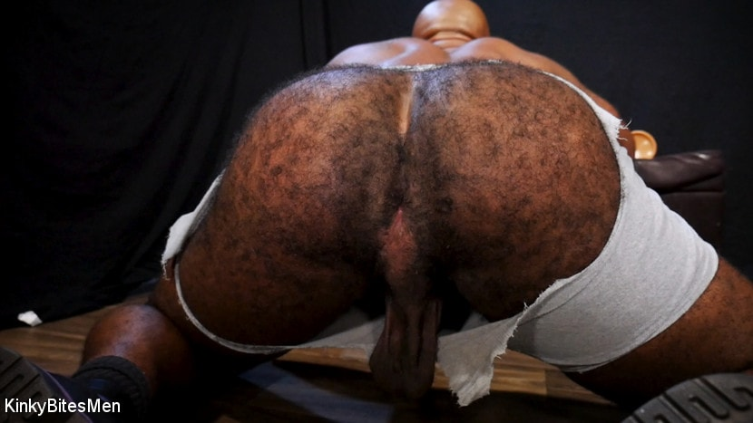 Micah Martinez - Micah Martinez: Hairy Muscle Butt Rides Huge Cocks to Please Daddy | Picture (7)