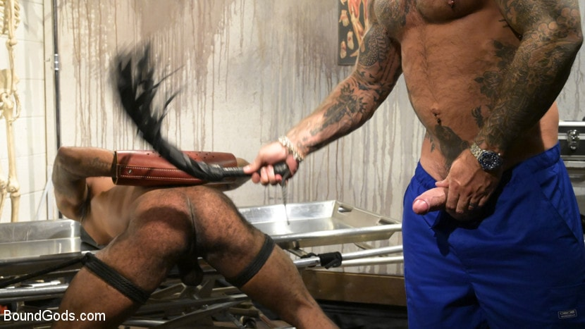 Micah Martinez - The UnorthoDoc: Jason Collins Hits Micah Martinez With BDSM Therapy | Picture (6)