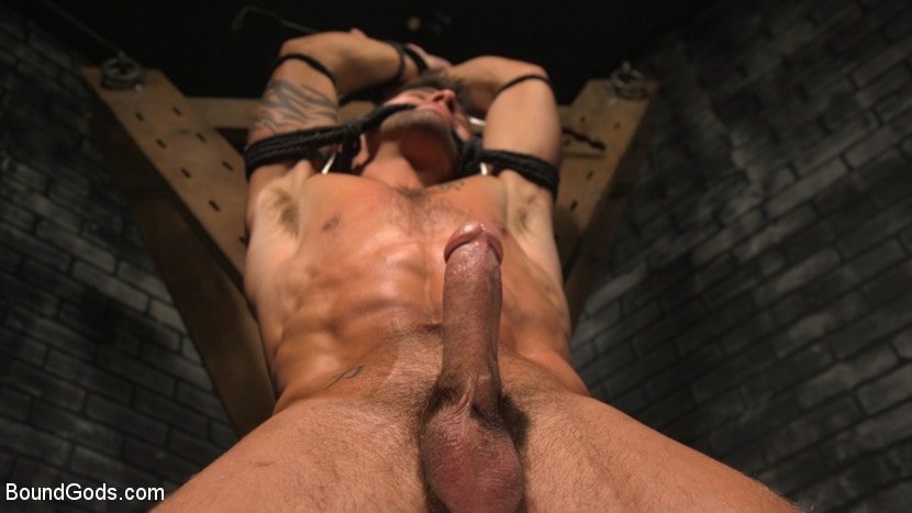 Sebastian Keys - A Hard Place: Casey Everett Tormented And Fucked In Full Suspension | Picture (11)