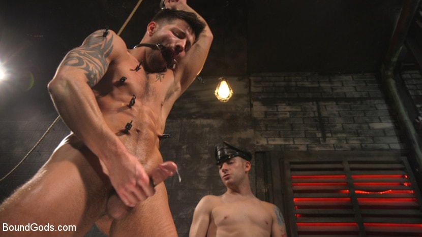 Sebastian Keys - A Hard Place: Casey Everett Tormented And Fucked In Full Suspension | Picture (23)