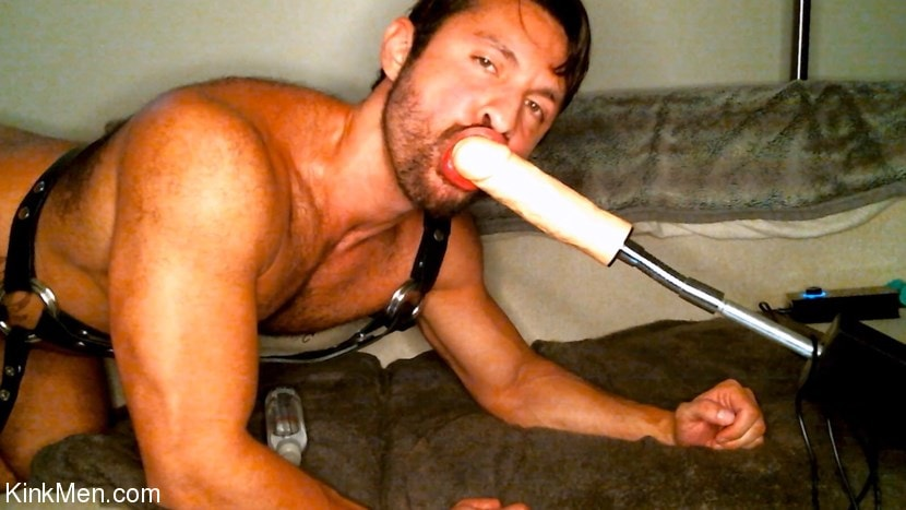 Seth Santoro - Seth Santoro Is One Cock Hungry Whore | Picture (14)
