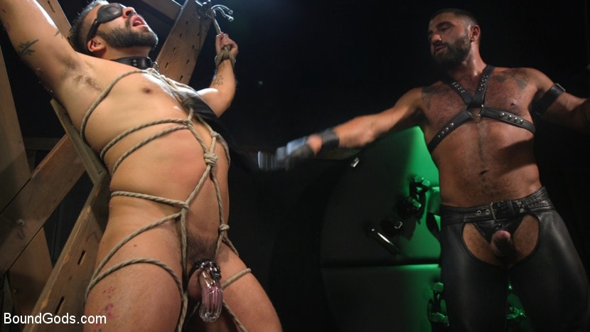 Sharok - Franco Gets FUCKED: New Slave Flogged and Fucked by Sharok | Picture (1)