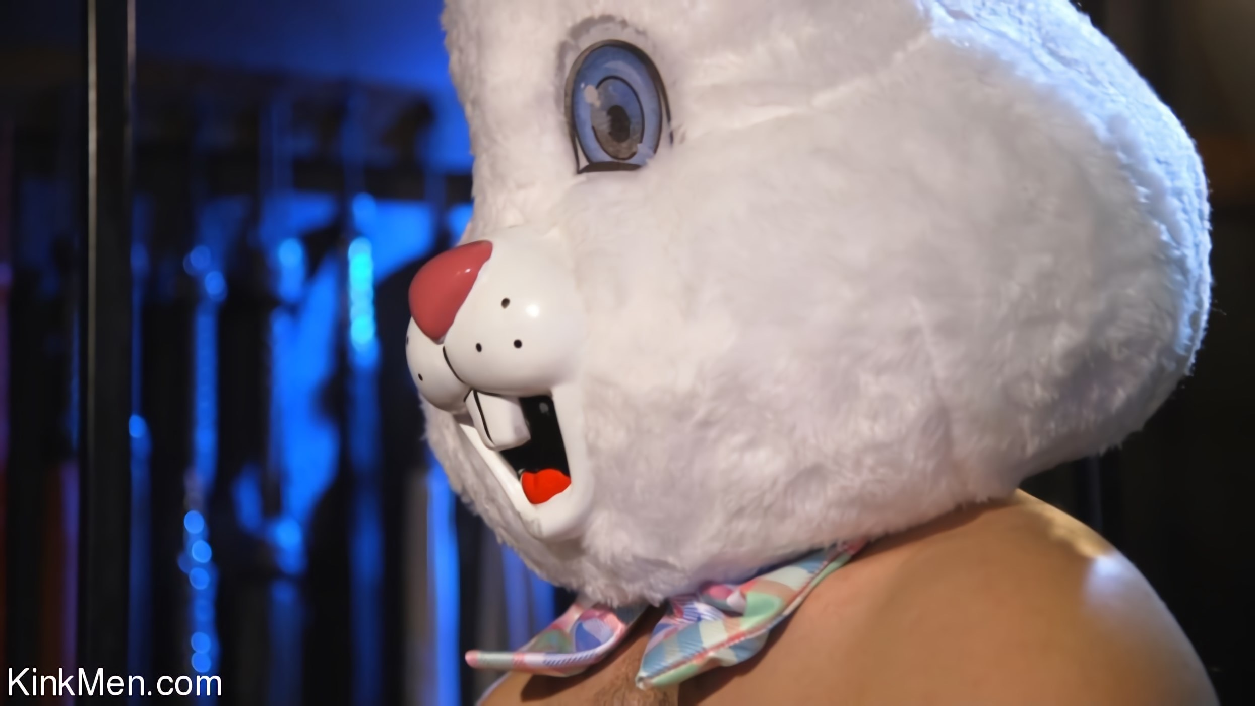 Ari Koyote - Bad Bunny: Ari Coyote Is Too Horny For Easter | Picture (4)