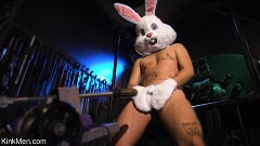 Ari Koyote - Bad Bunny: Ari Coyote Is Too Horny For Easter | Picture (1)